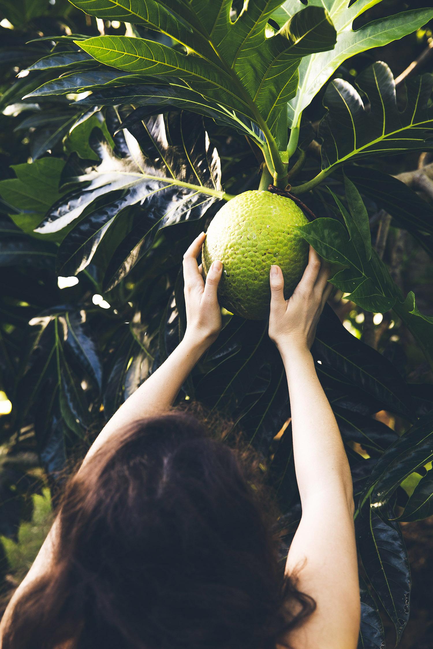 Kauai-0616_V1_final.jpg
