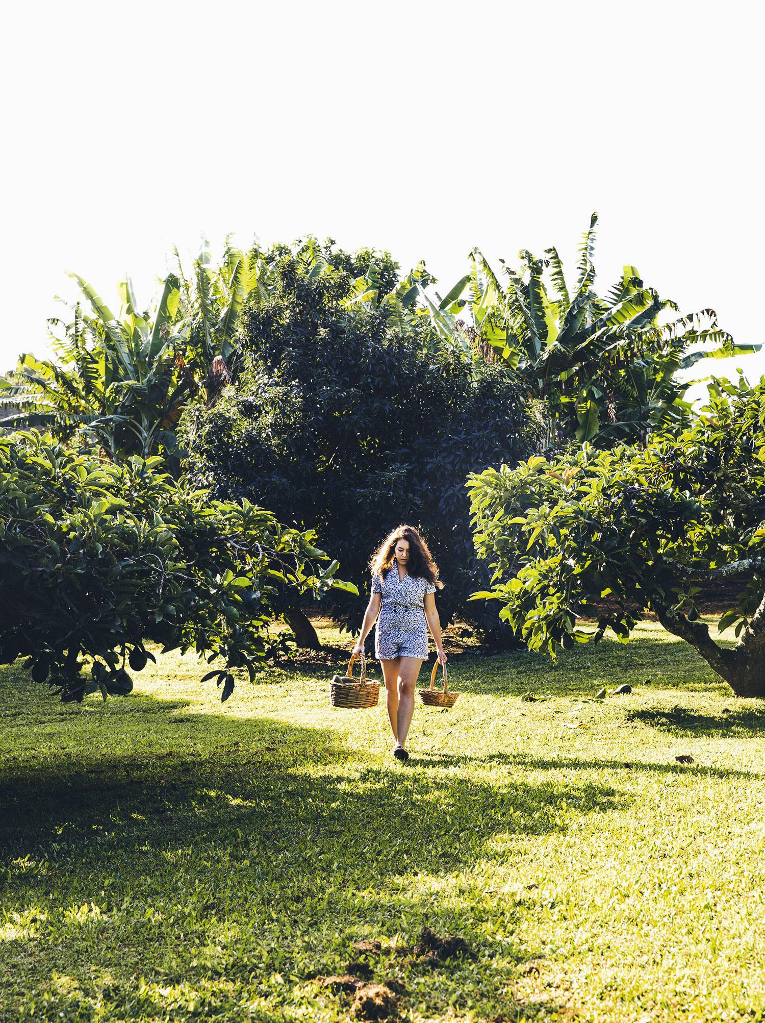 Kauai-0701_V1_final.jpg