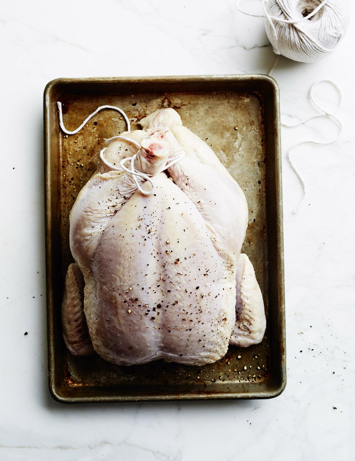 Chicken_8228_final.jpg