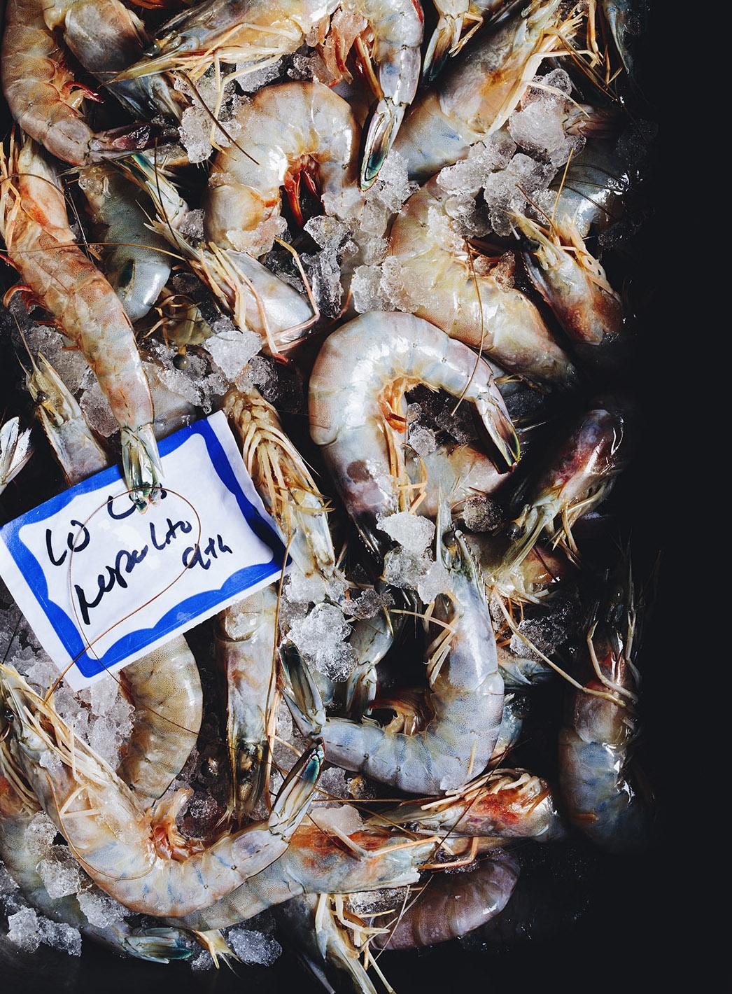 Nopa_Shrimp_11206_V1_final.jpg