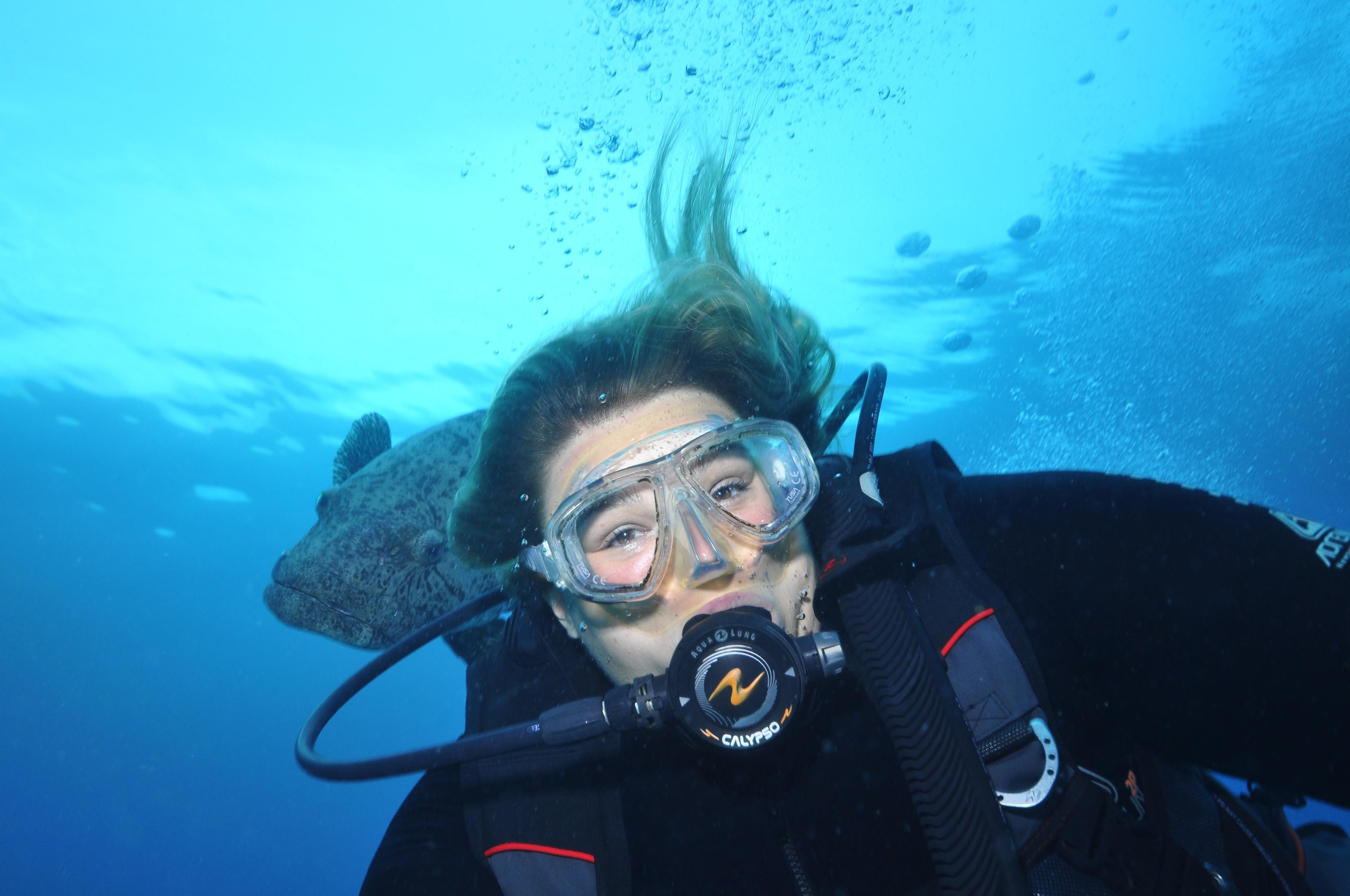 Diving at Cod Hole
