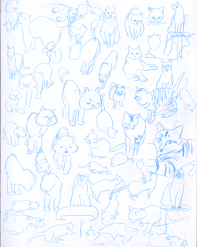 Sketchbook_cats.png