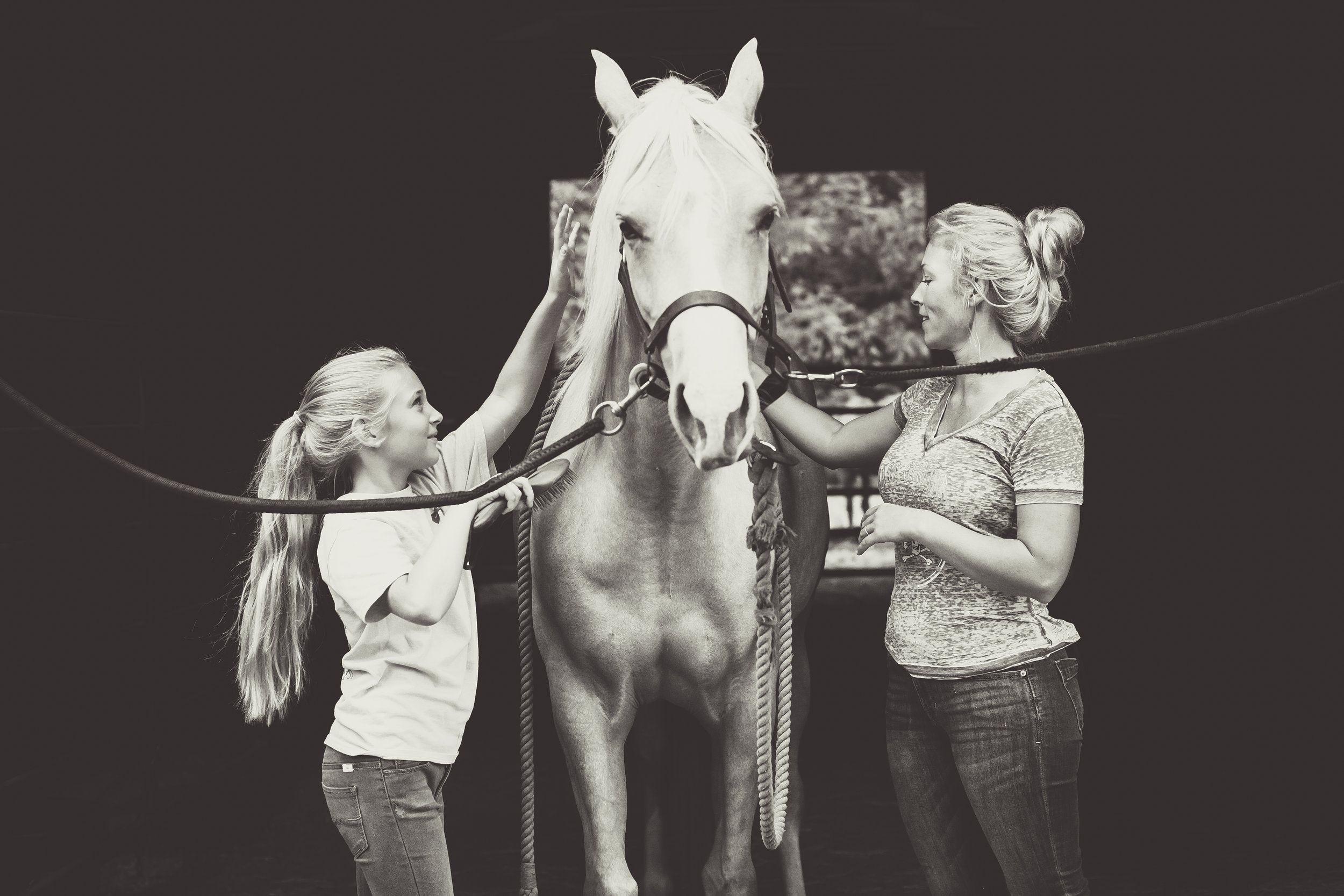 Kaplar Horse-0176-2.jpg