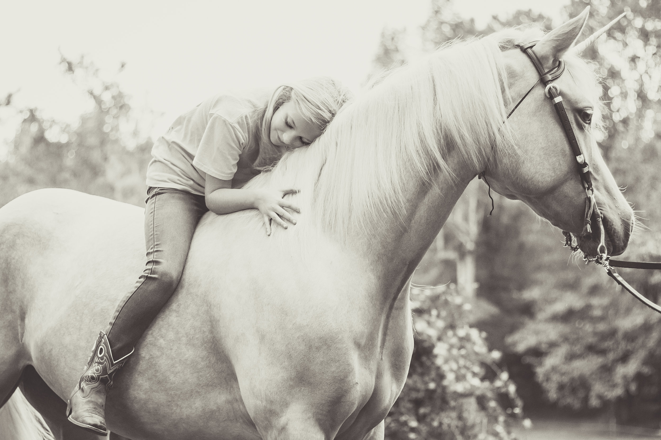 Kaplar Horse-0332-2.jpg