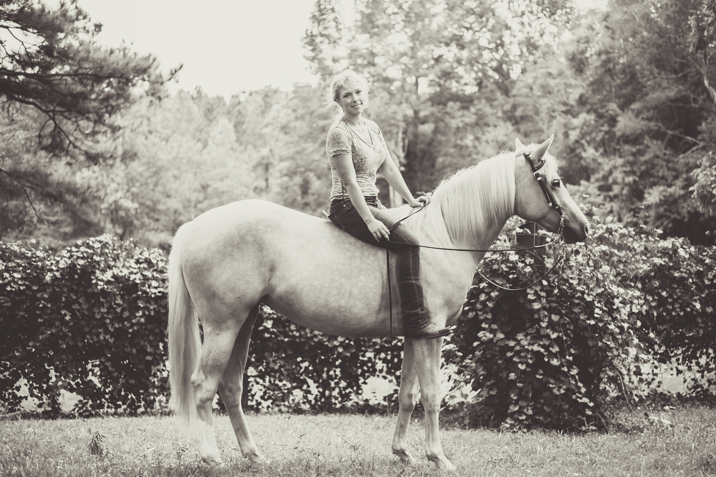Kaplar Horse-0415-2.jpg