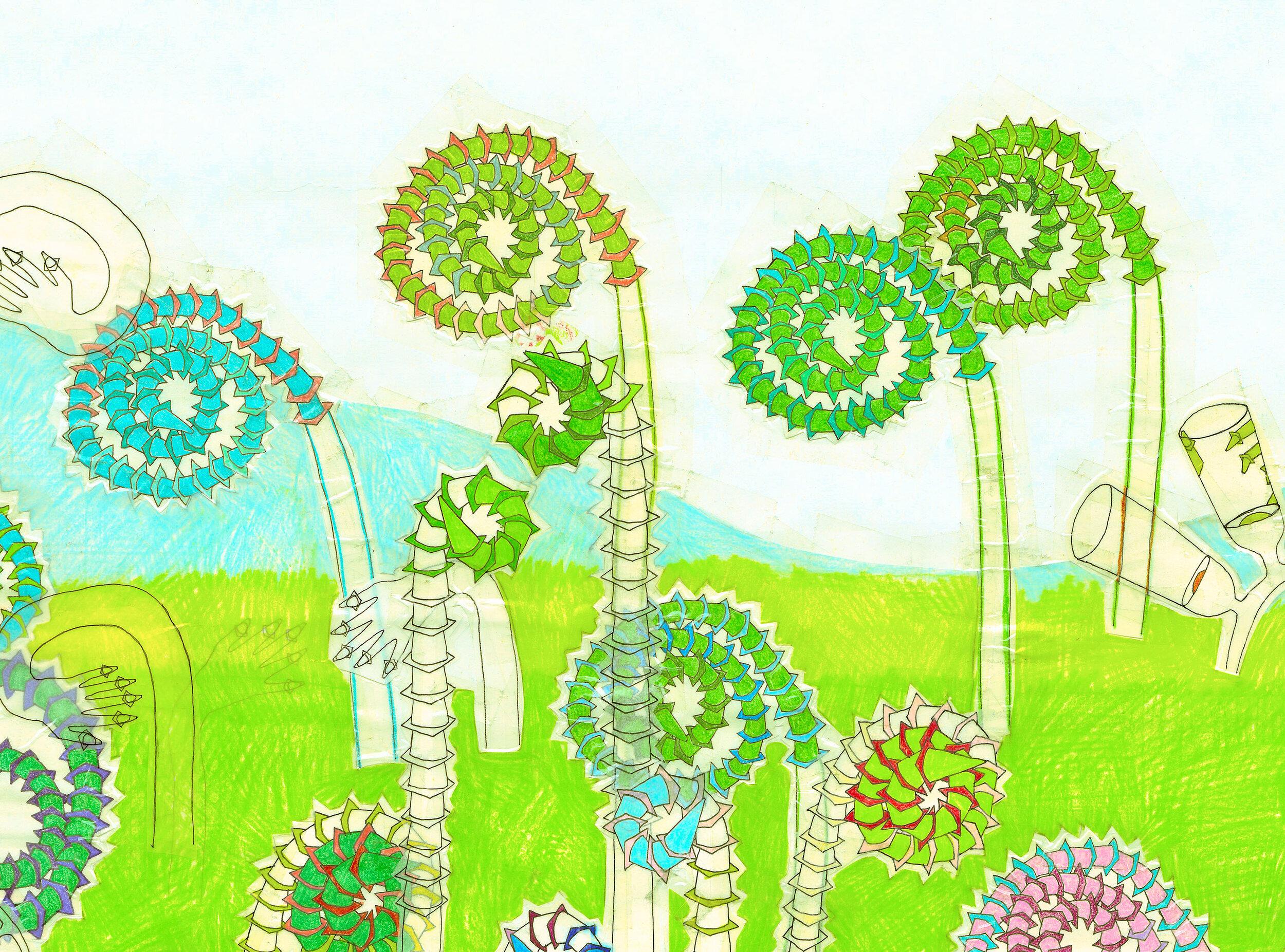 The-Last-Summer-detail-fern-unfurling.jpg