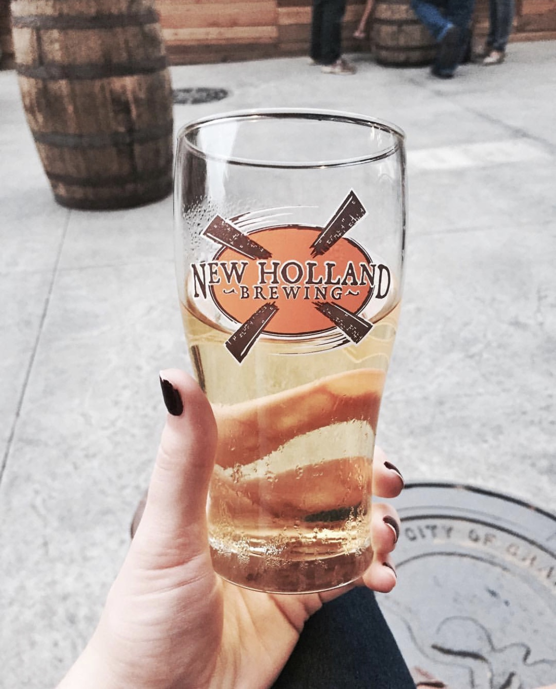 grand rapids restaurant drinks beer new holland food