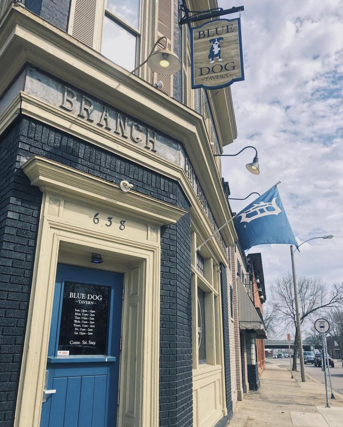 blue dog tavern west grand rapids michigan iheartgr iheartgrandrapids