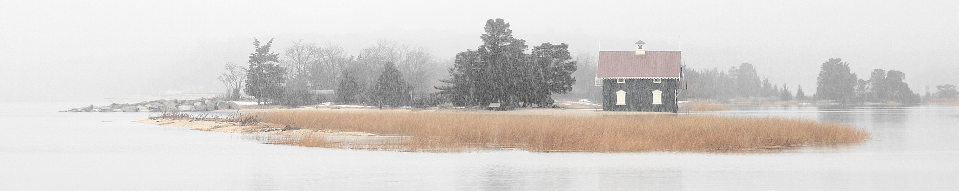 Gamecock Cottage Snowfall.jpg