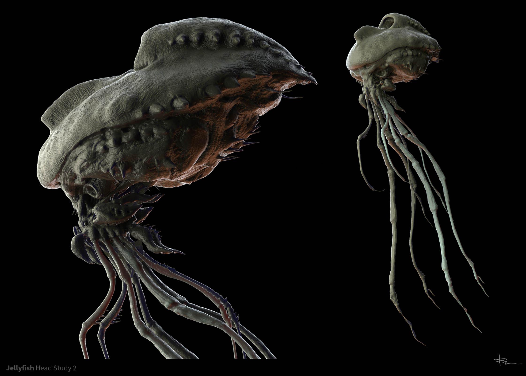 TJFRame-Art_CanceledProj_JellyfishStudy2.jpg