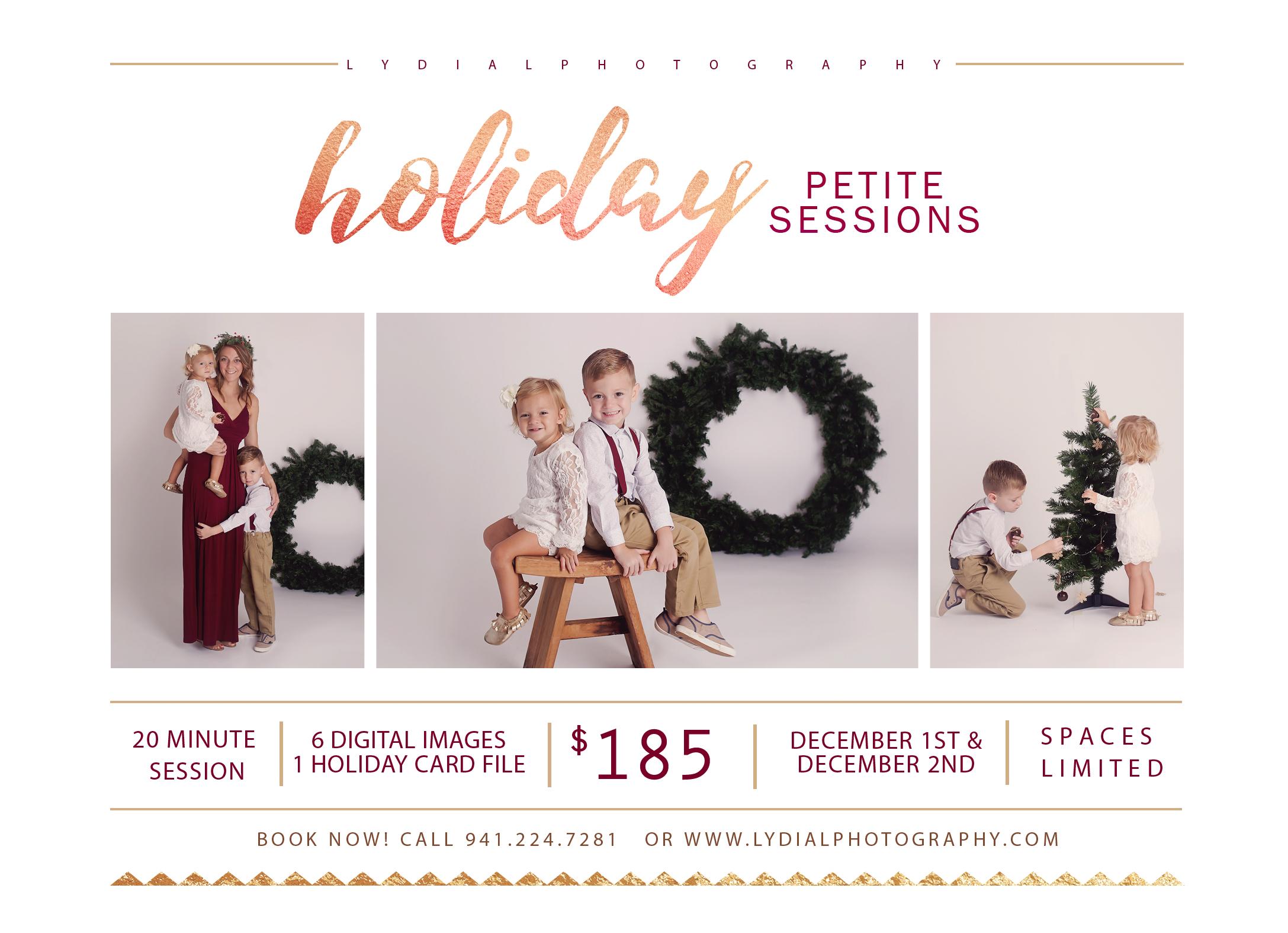 Holiday Mini Post.jpg