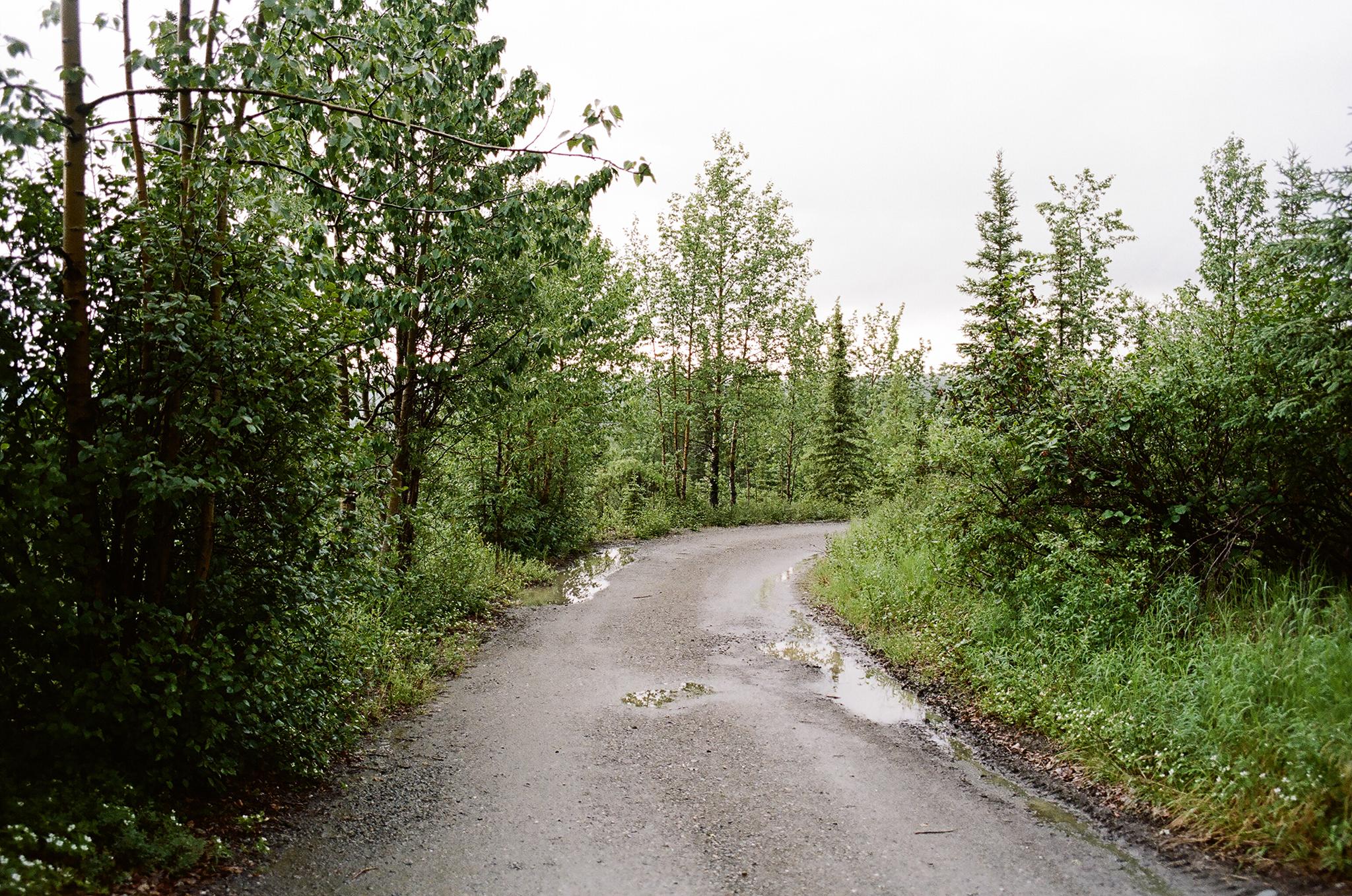 WS_Alaska-7.jpg