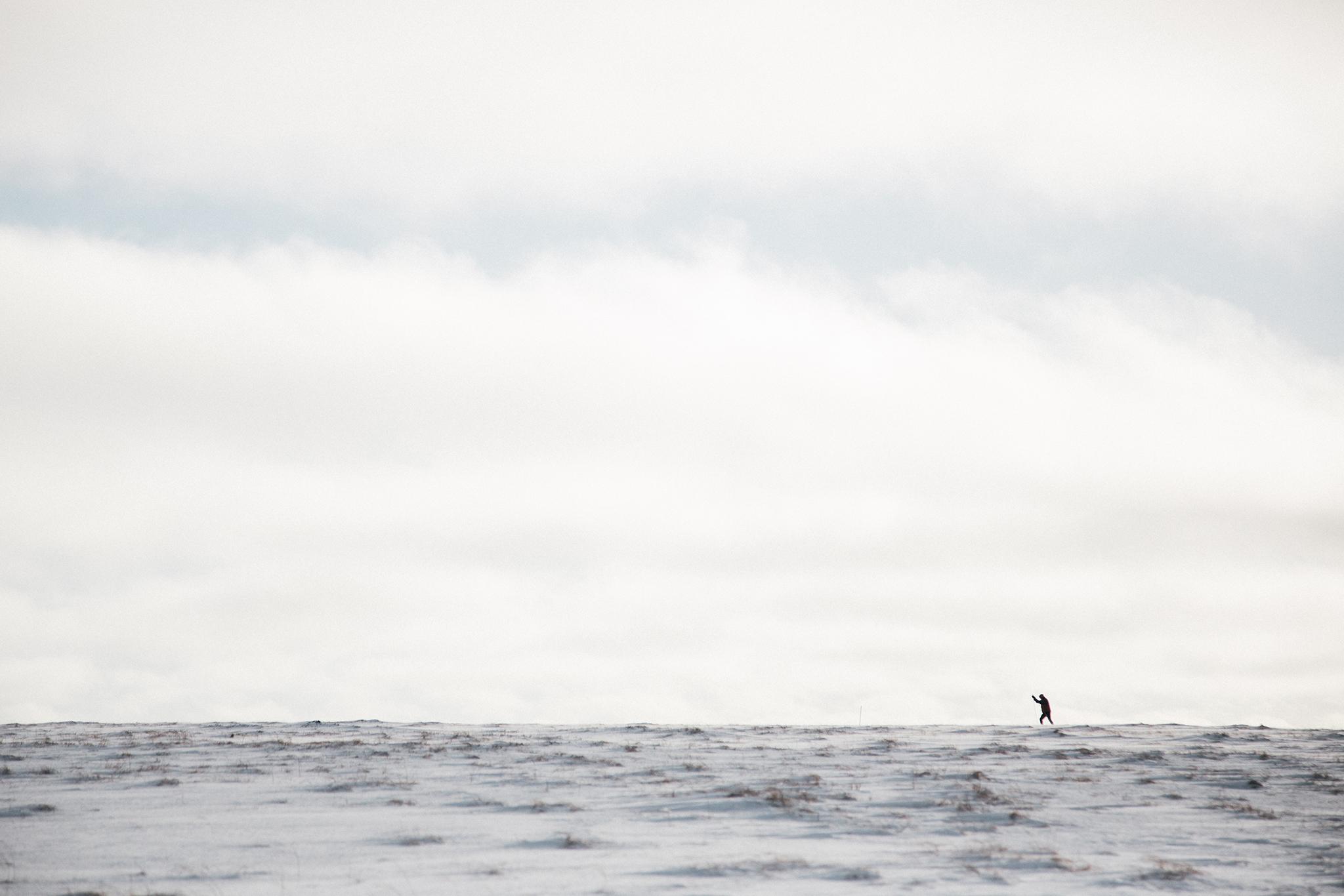 WS_Alaska2015-27.jpg
