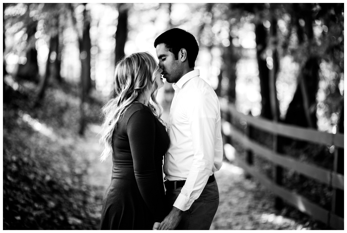 Olmsted Falls Engagement Session_0001m.jpg