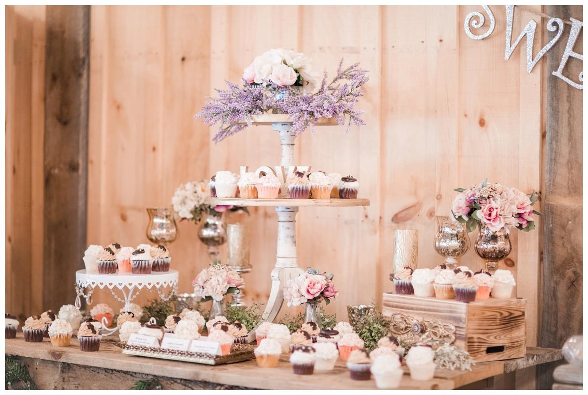 The Barn on Enchanted Acres Wedding_0022.jpg
