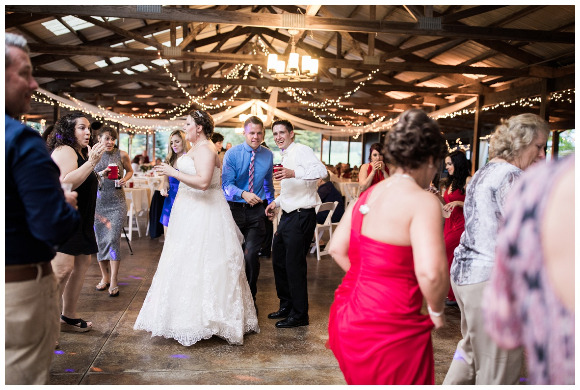 Meadow Ridge Farm Wedding_1 (133).jpg