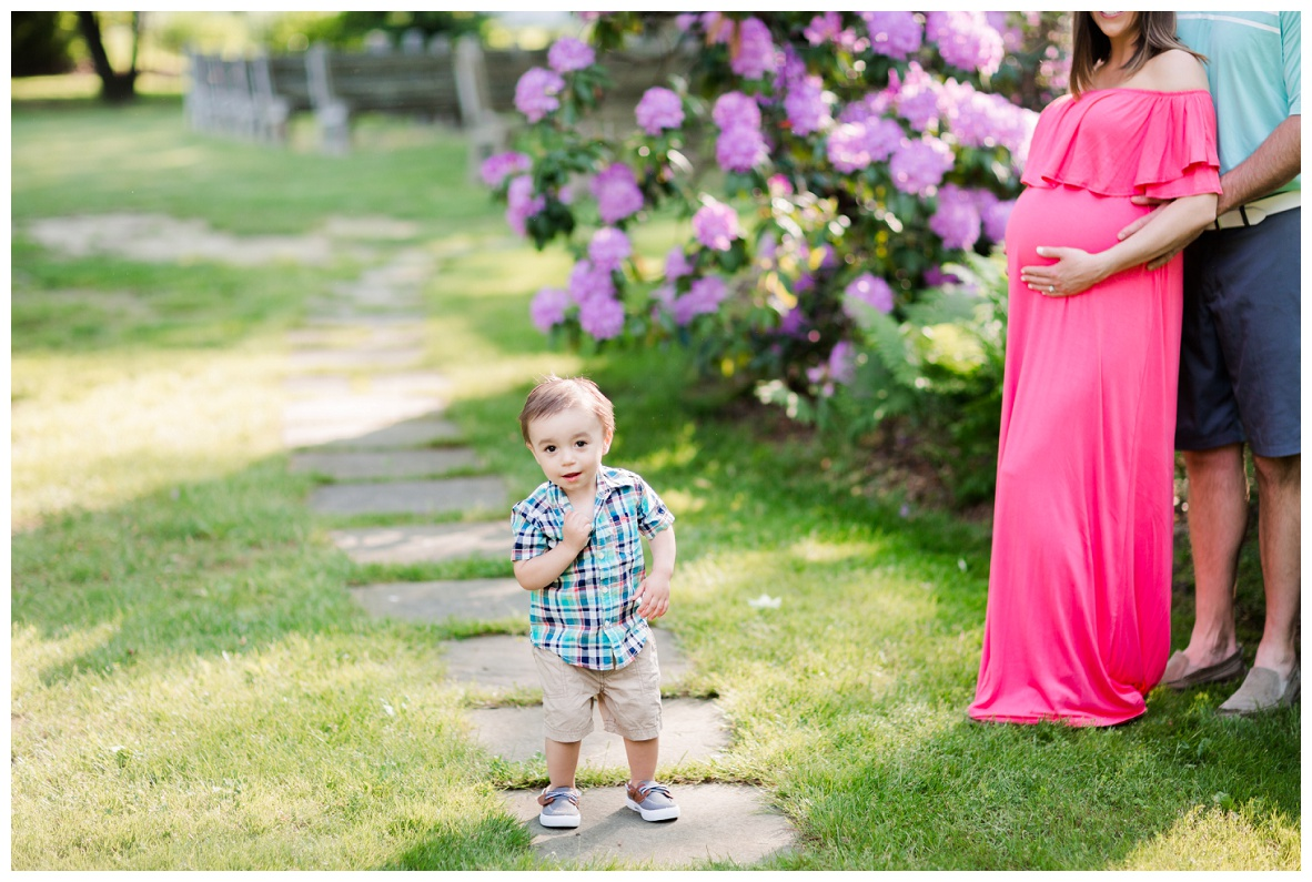 Summer Family And Maternity Session