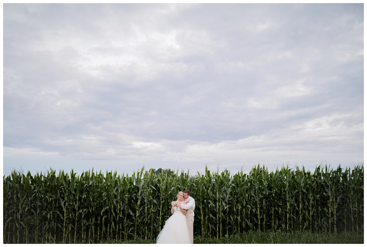Nickajack Farm July Wedding_0162.jpg