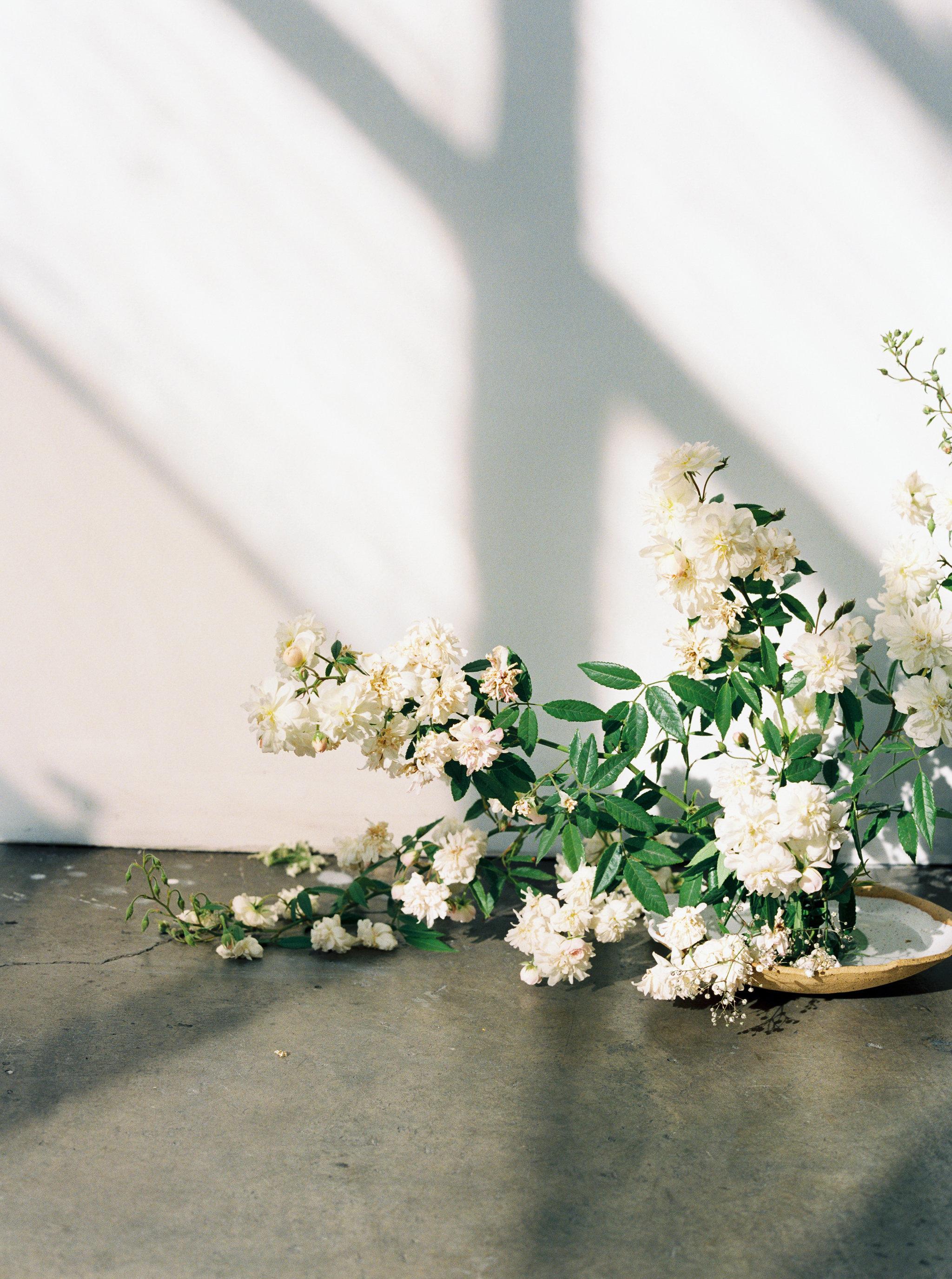 PHOTO CREDIT |  meiwen wang photography