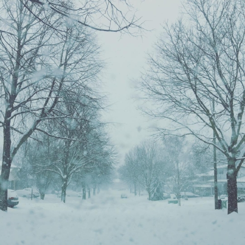 A very very snowy picture of my place - my neighbourhood in North Oshawa.
