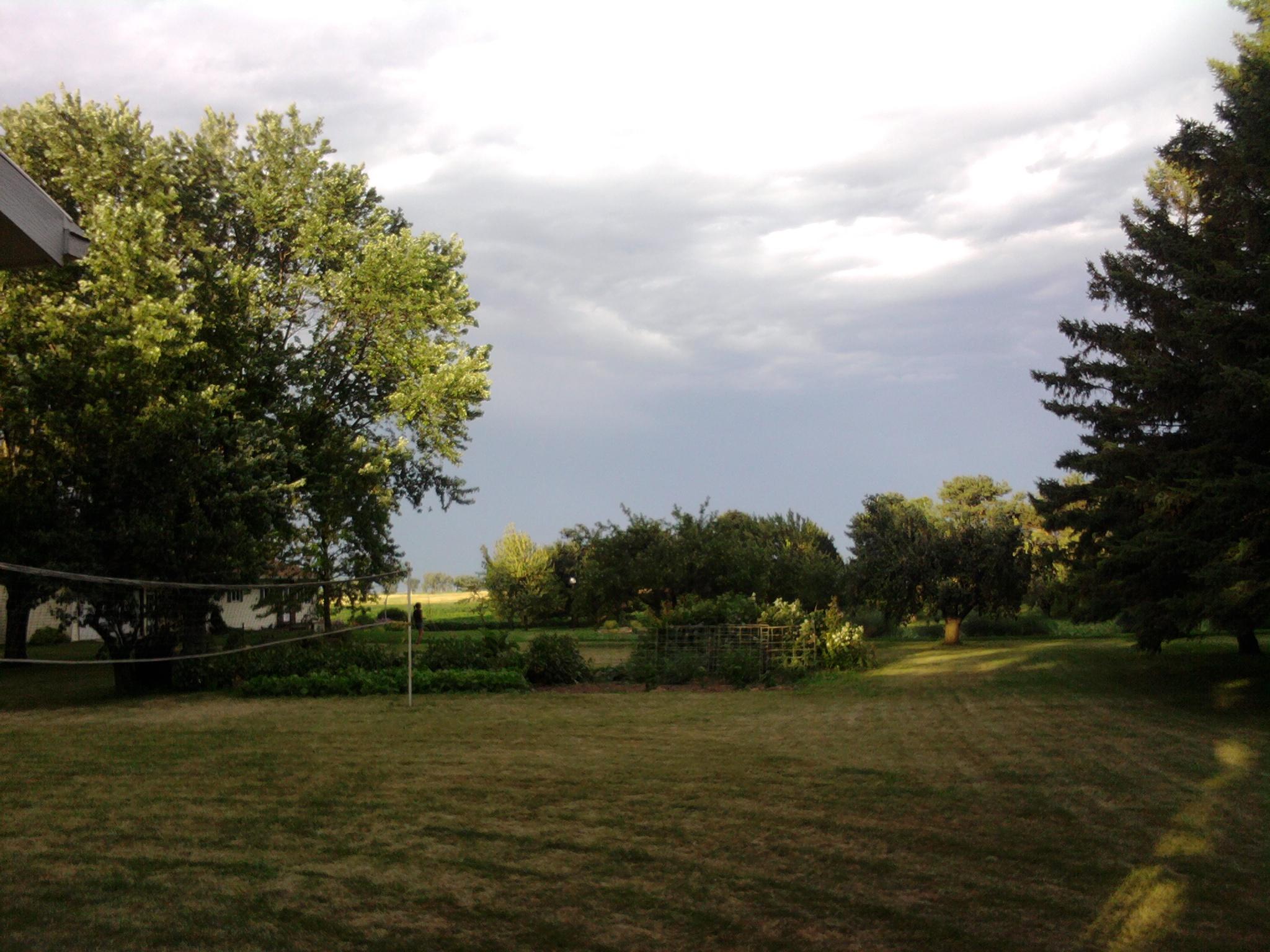 july 2010 066.jpg