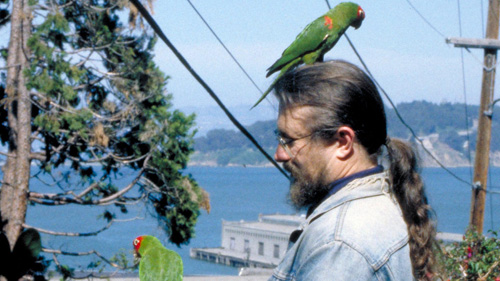 Writer Mark Bittner, Subject Of  The Wild Parrots Of Telegraph Hill , On Set With A Couple Of His Costars