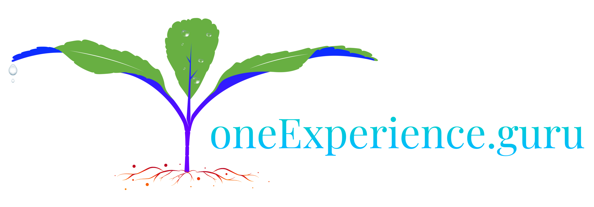one-experience_SVG-15.png
