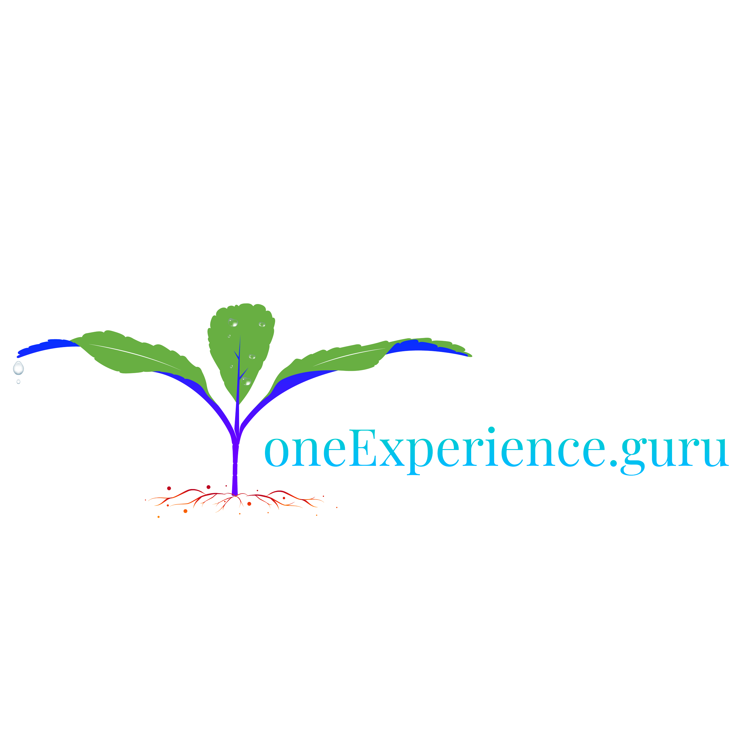 one-experience_SVG-14.png
