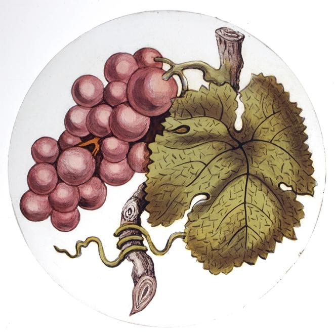 Grapevine Roundel
