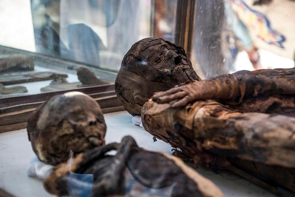 MummifiedMice.jpg