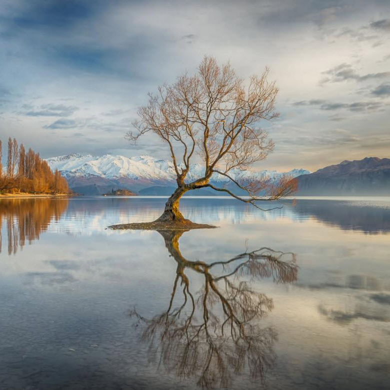Wanaka, New Zealand - Linda Cutche