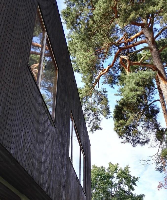Aalto talo AK 15.jpg