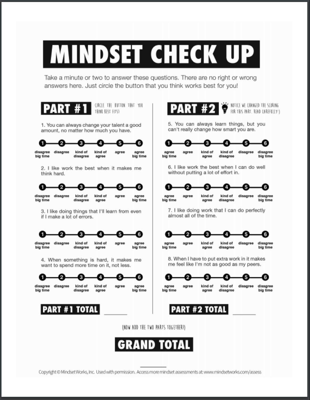 Mindset Check up 3 .png