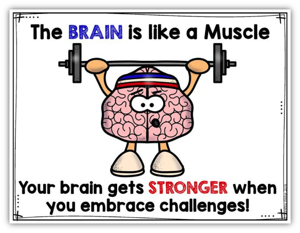 The Brain is like.png