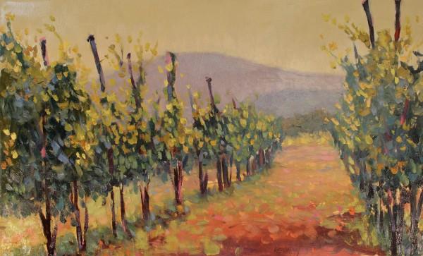 Vineyard III