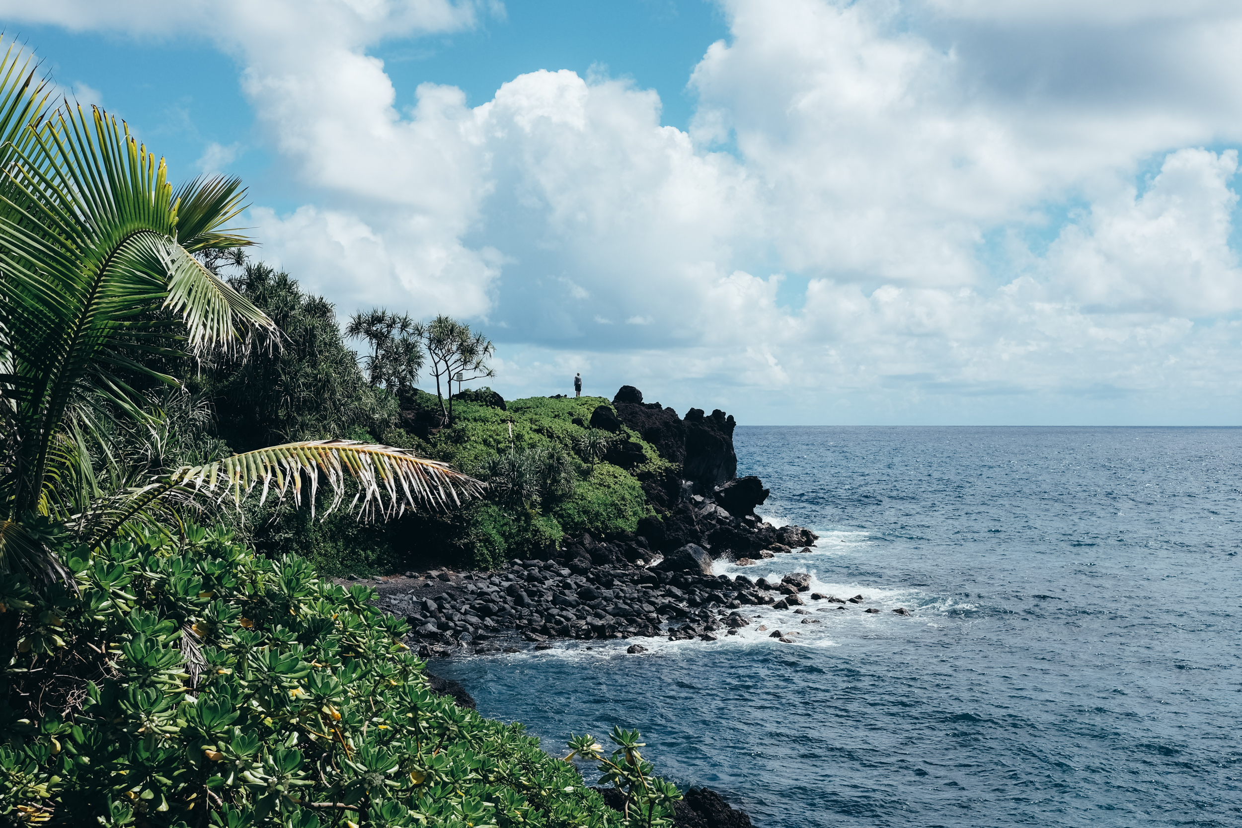 Maui056.jpg