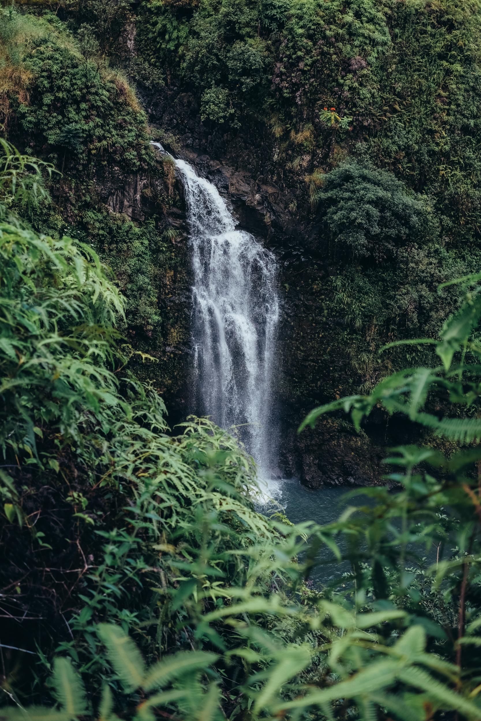 Maui043.jpg