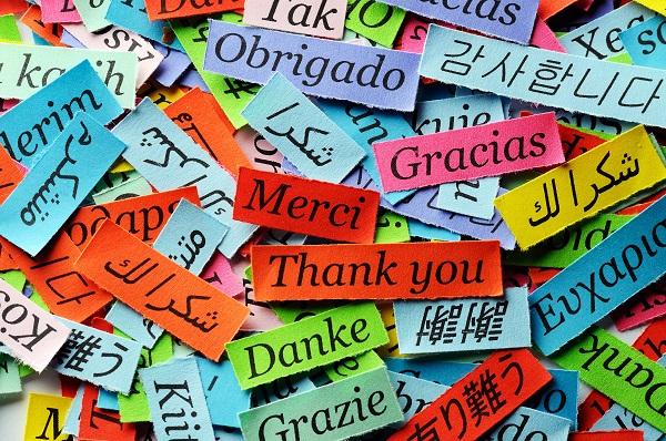 gratitude banner for email2.jpg