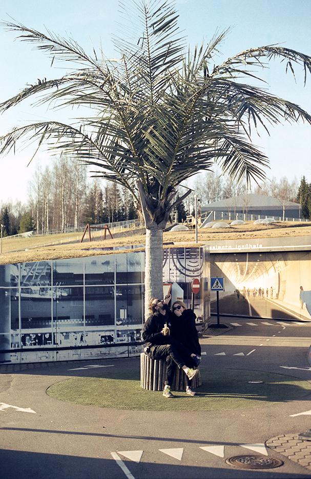 Puhkus palmi all