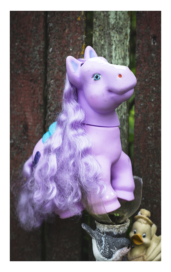 Lilla poni aia kaunistuseks