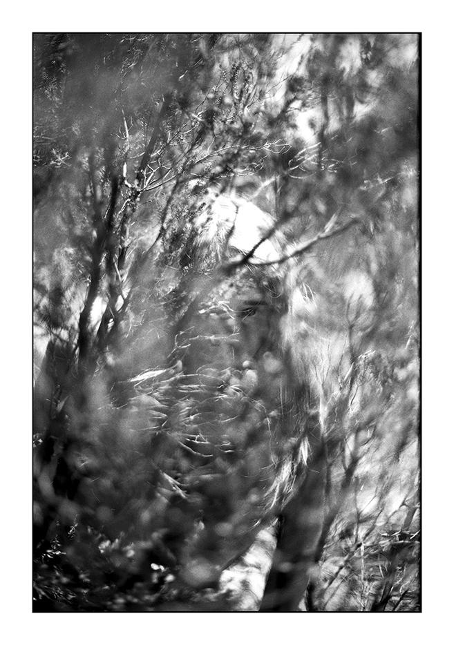 helen_västrik_camouflage2.jpg