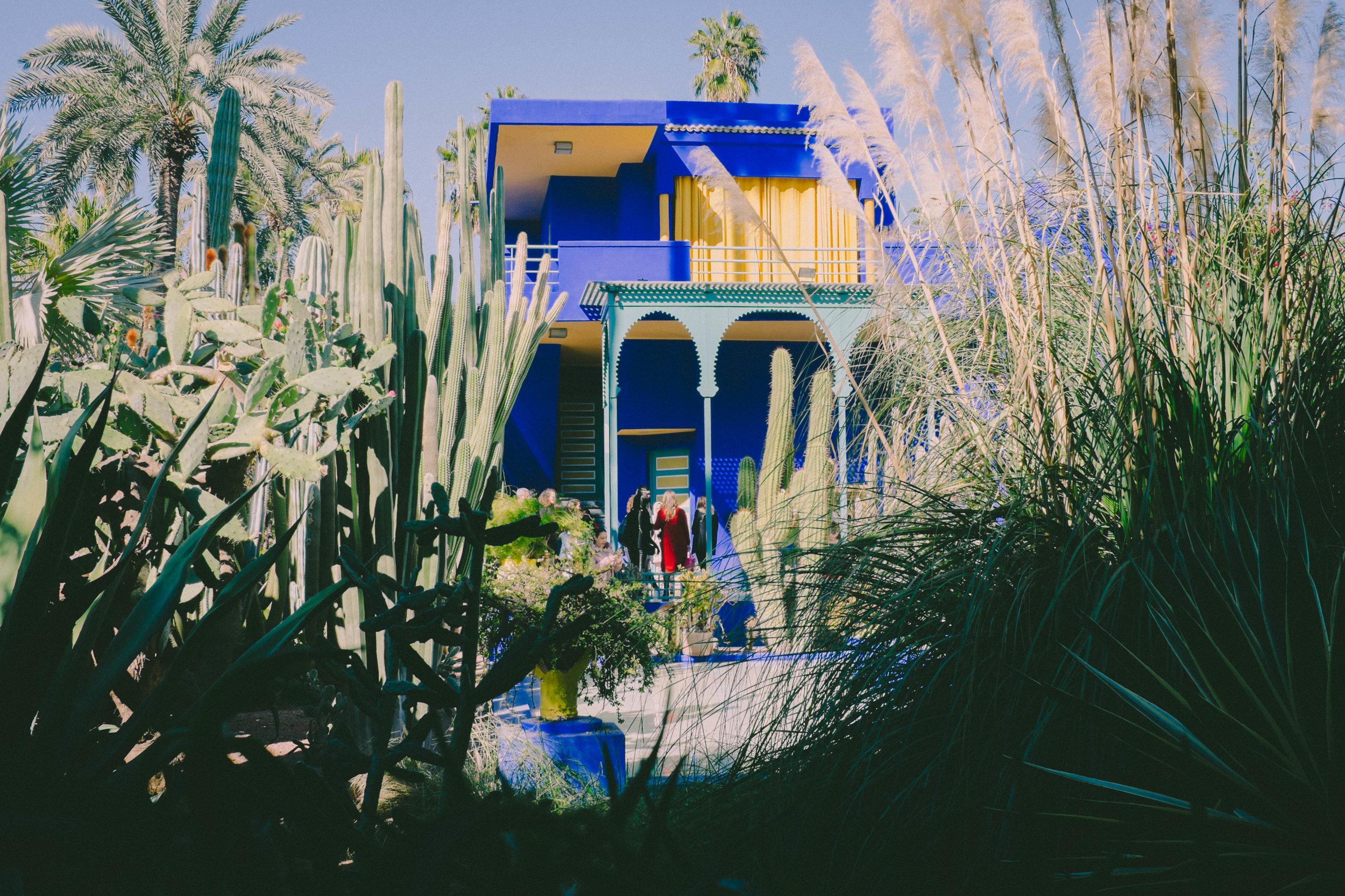 Morocco_Helen_Västrik_Jardin_Majarell_-3.jpg