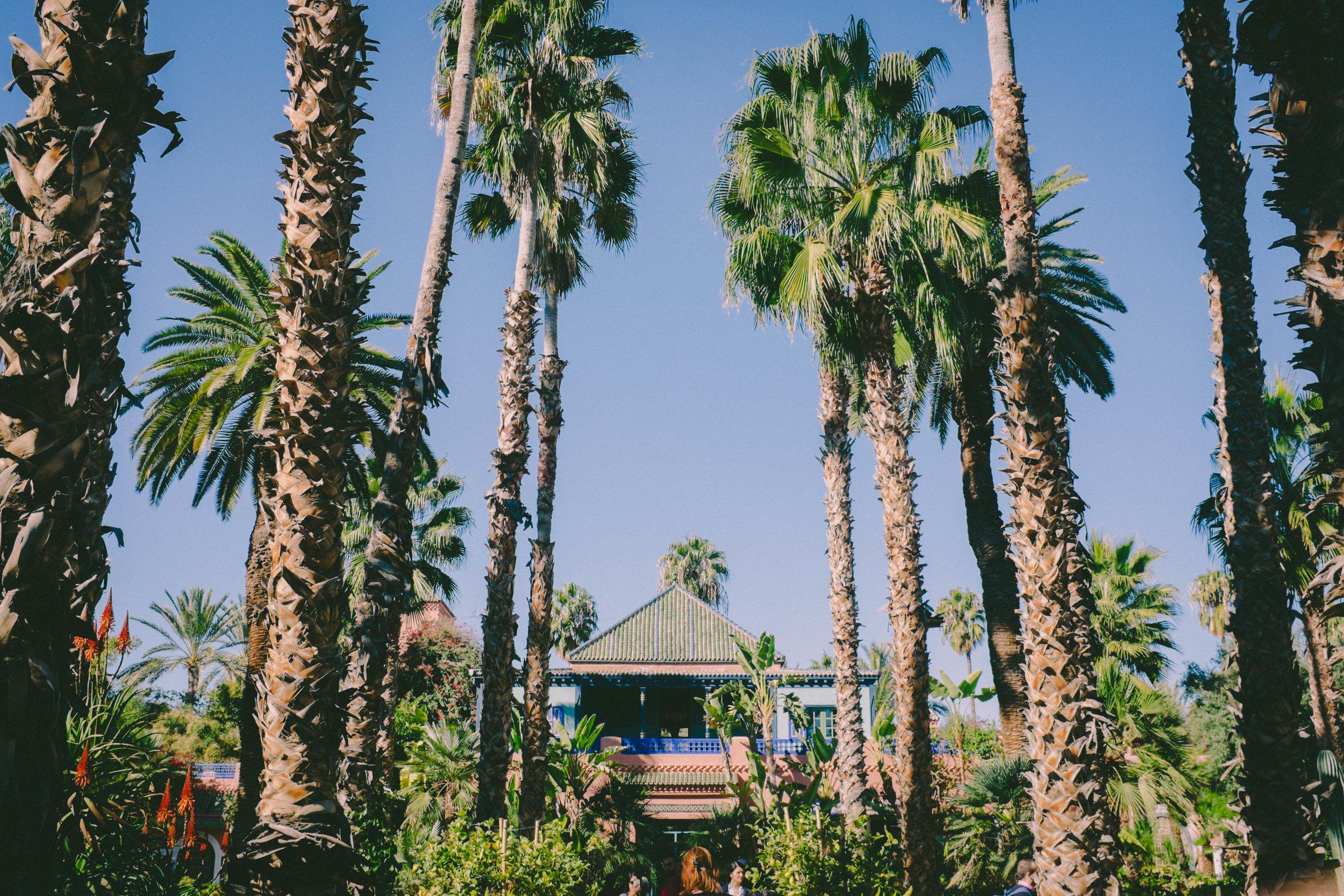 Morocco_Helen_Västrik_Jardin_Majarell_-7.jpg