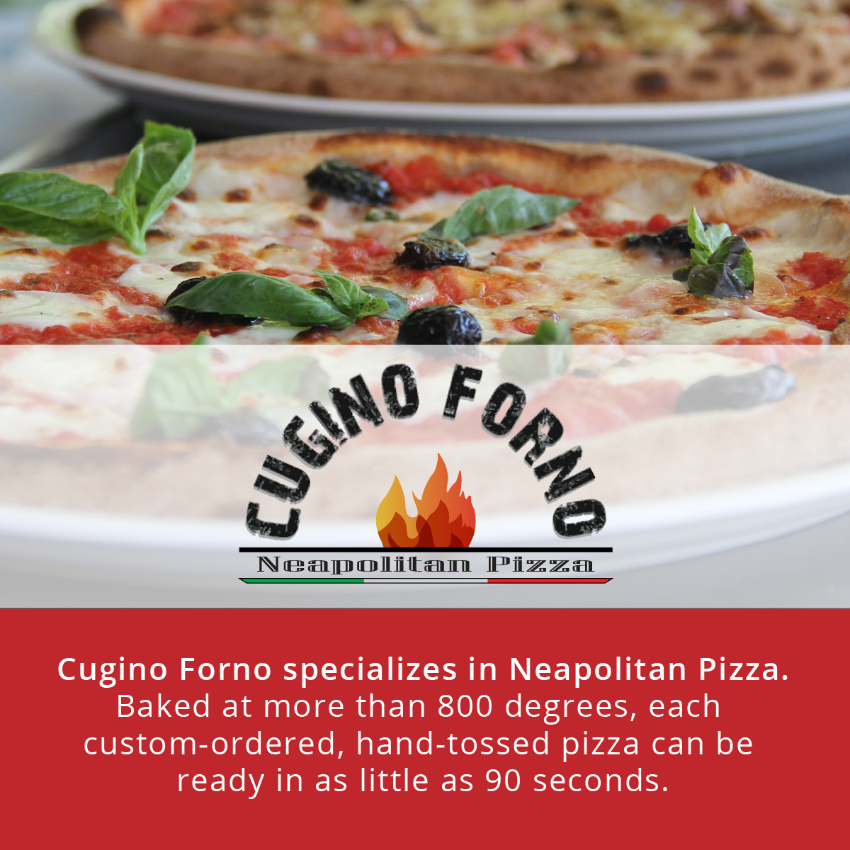 Cugino Forno  |  Revolution Mill