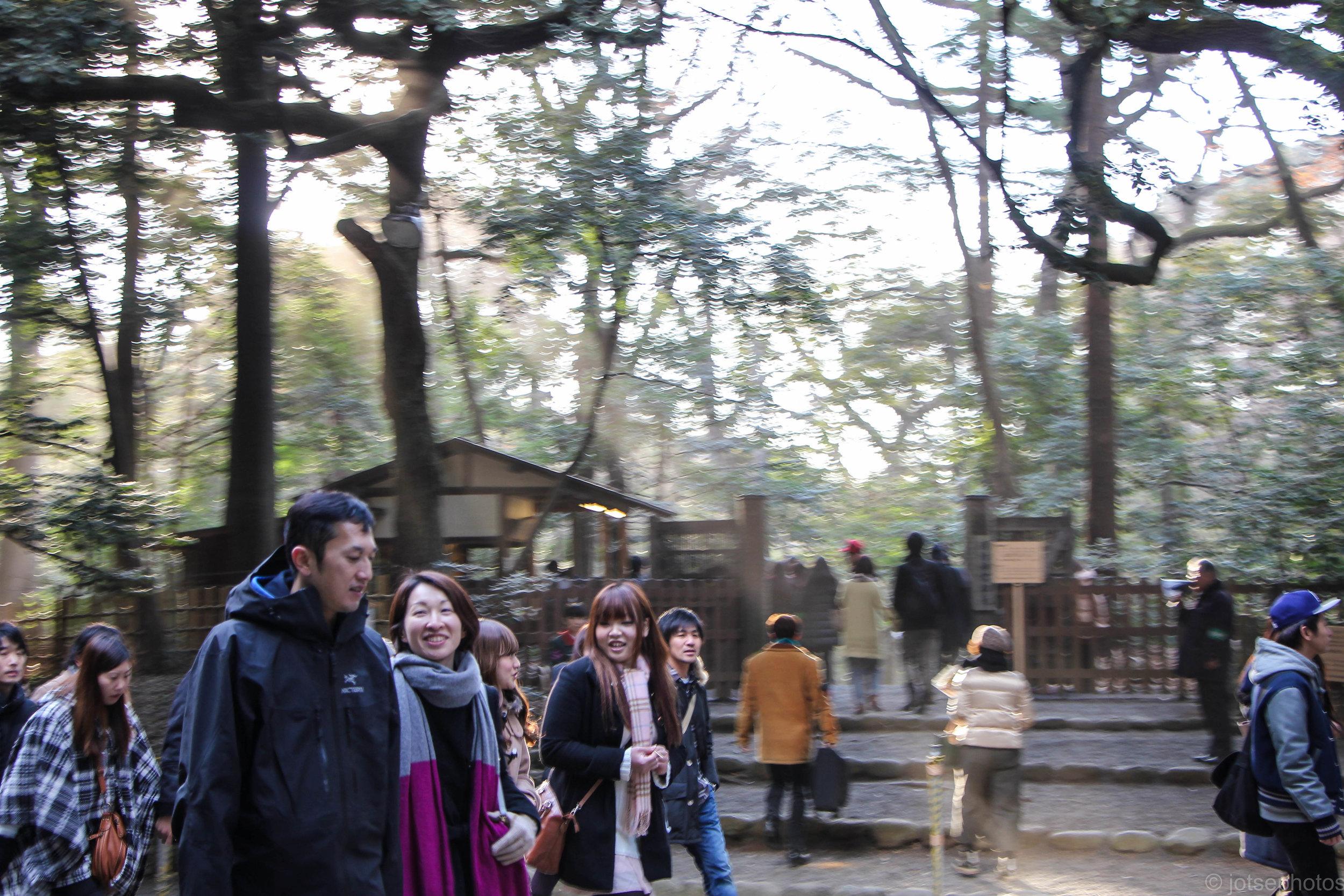 meiji-jingu-shrine_11915340885_o.jpg