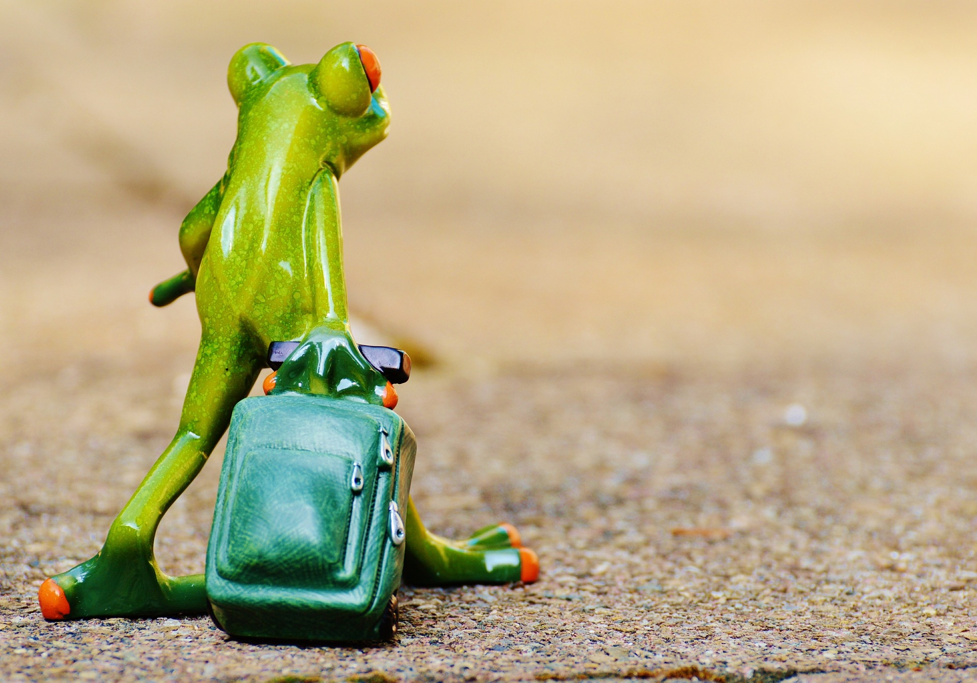 Frog supplying a suitcase