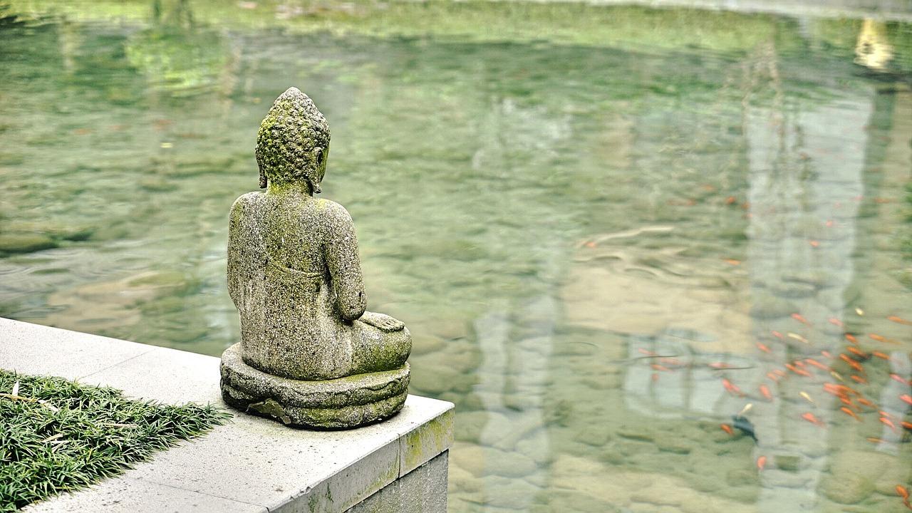 Calm Buddha Scene