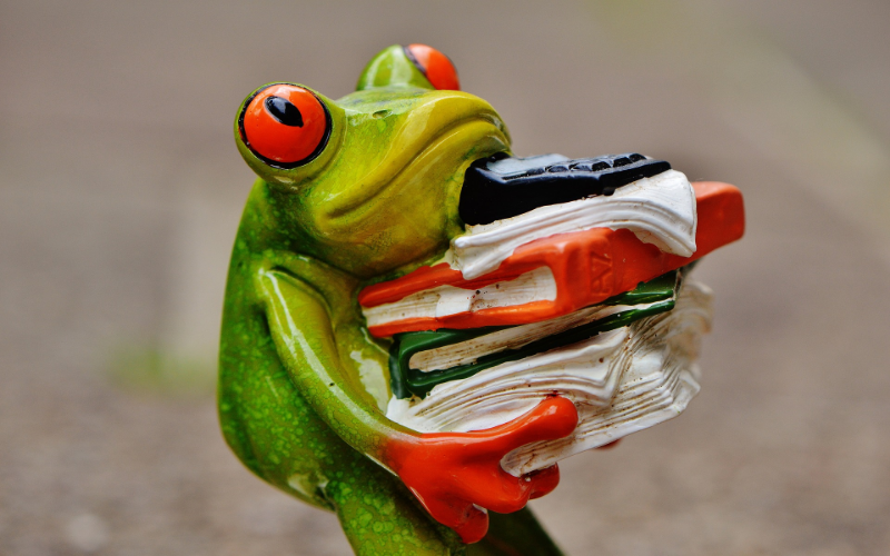 Professional Services Frog