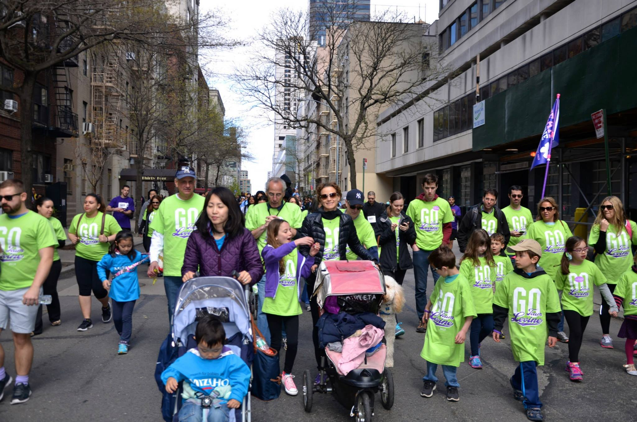 team-levine-walkers-at-the-2015-march-for-babies-walk_16730042310_o.jpg