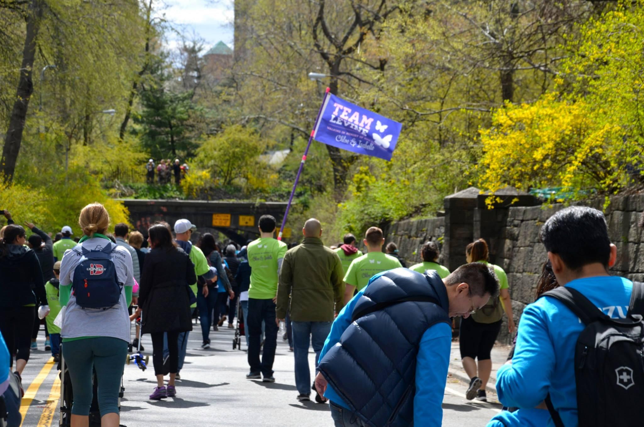 2015-march-for-babies-walk_16710135307_o.jpg